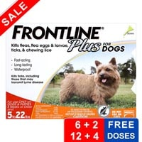 Cheapest Frontline Plus For Dogs And Cats