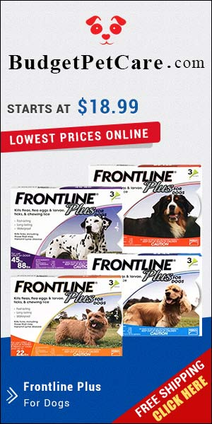 Frontline Plus has been most trusted parasite control for years. It destroys fleas and ticks quickly and prevents its reinfestation. Buy Frontline Plus at affordable price from budgetpetcare.com.