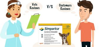 Simparica : Vets V/S Customers Reviews
