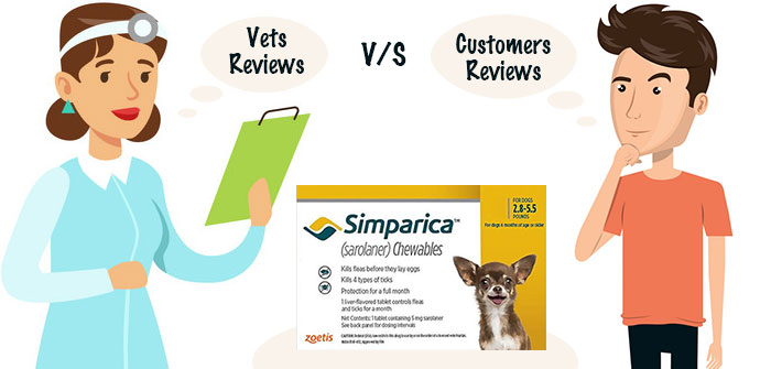 Vet's Point of Simparica Review