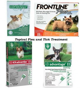 Topical Flea and Tick Prevention for Dogs