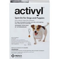 Activyl for small dogs orange