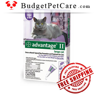 Advantage-II-Cats