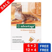 Advantage Kittens and Small Cats