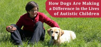 How Dogs Are Making a Difference in the Lives of Autistic Children