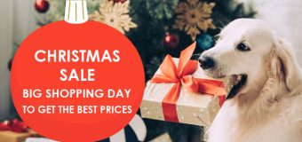Christmas Sale – Big Shopping Day To Get the Best Prices