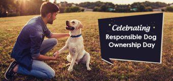 Celebrating Responsible Dog Ownership Day