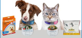 A Quick Fix Cure For Pets – Flea And Tick Collars