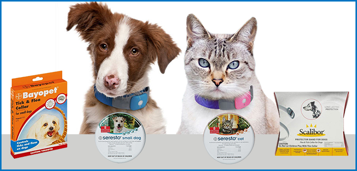 Best Flea And Tick Collars