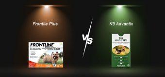 Frontline Plus vs Advantix for Dogs