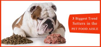 3 Biggest Trend Setters In The Pet Food Industry