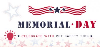 Memorial Day – Celebrate With Pet Safety Tips