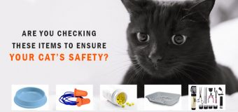 Are You Checking These Items to Ensure Your Cats Safety?