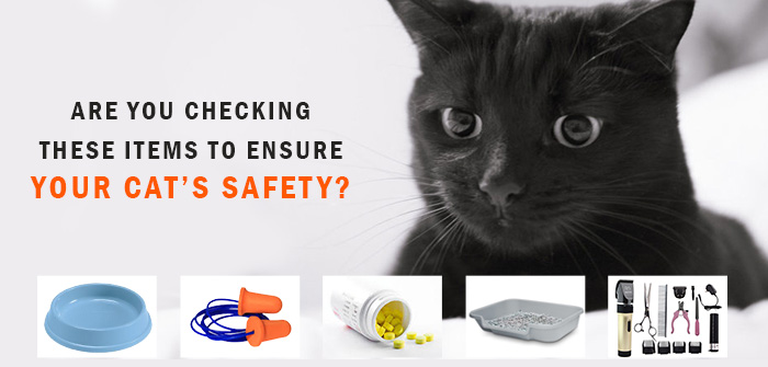 Cat's Safety