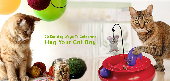 Celebrate Hug Your Cat Day