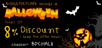 A Halloween Treat Of 8% Discount From Budgetpetcare- Grab The Offer Now!