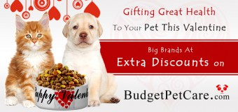 How About Gifting Great Health To Your Pet This Valentine- Big Brands At Extra Discounts On Budgetpetcare!