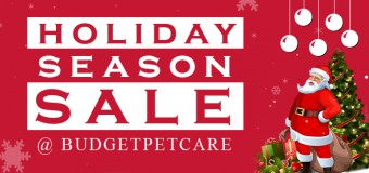 LET'S Celebrate Holiday Month with BudgetPetCare Christmas Sale