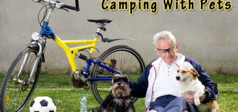 Camping With Pets – Benefits and Concerns