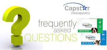 Capstar for Dogs – Frequently Asked Questions