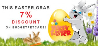 This Easter, Grab 7% Discount On BudgetPetCare!