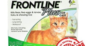 Have you bought Frontline For Cats for your Tabby cat as yet?
