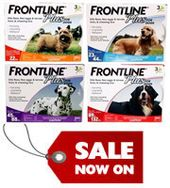 Frontline Plus On Sale at BudgetPetCare