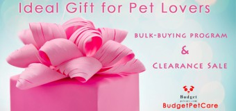 The Ideal Gift for Pet Lovers – Maximum Discounts!