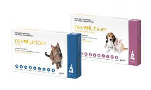 Revolution for Dogs And Cats