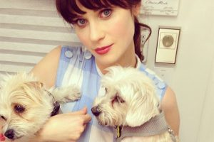 Zooey Deschanel with Dogs