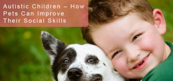 Autistic Children – How Pets Can Improve Their Social Skills