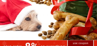 BudgetPetCare Is Doing Little Something Extra For Pets This Christmas!