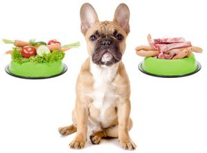 raw pets food diet