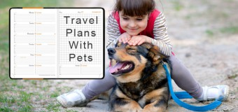 Travel Plans With Pets- Tips To Consider For A Trouble-Free Journey!