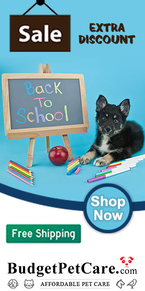 Time for Back to School: 15% off Just About Everything + 10% Instant Cashback! Apply Code: BACK2SCHL