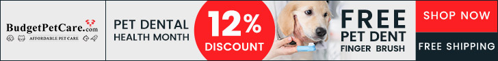 https://www.budgetpetcare.com/sale.aspx?utm_source=ls&&utm_campaign=Dental-month2021&coupon_no=NPDH12