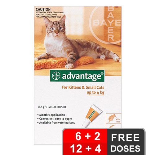 Advantage Kittens & Small Cats 1-9lbs 12 + 4 Free