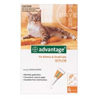 Advantage Kittens & Small Cats 1-9lbs