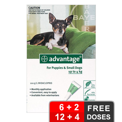 Advantage small dogs pups 1 10lbs green of