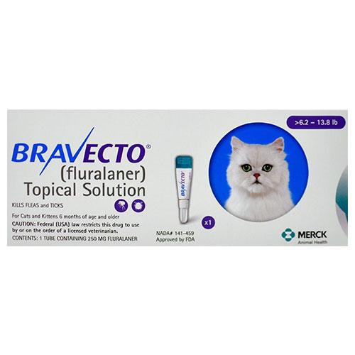 Bravecto cat medium