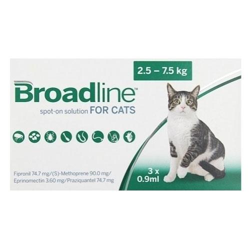 Broadline spot solution large cats