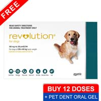 Revolution for large dogs 40 1 85lbs green pet dent oral gel