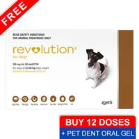 Revolution for small dogs 10 1 20lbs brown pet dent oral gel