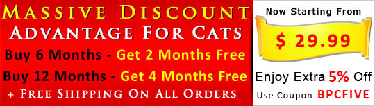 Buy Advantage for Cats  6 Months Sypply & Get 2 Month Absolutely Free