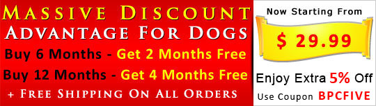 Buy Advantage for dogs 6 Months Sypply & Get 2 Month Absolutely Free
