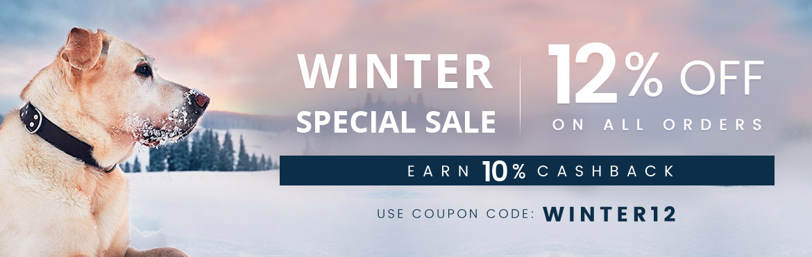 Winter Special Sale