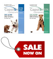 Capstar for dogs and cats