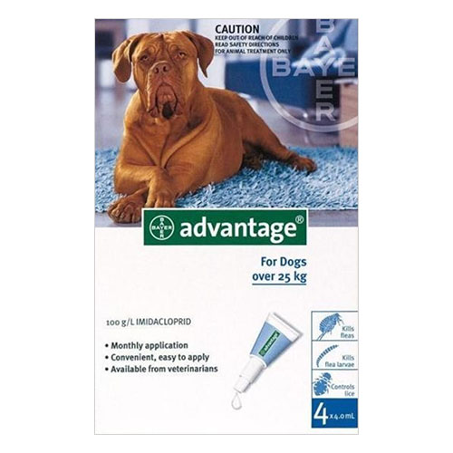 Advantage Extra Large Dogs over 55 lbs (Blue) 12 + 4 FREE