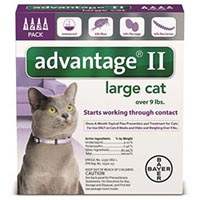 advantage ii cats over 9lbs (purple) 6 months on lovemypets.com