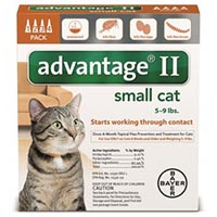 Advantage II For Small Cats 59lbs Orange 12 MONTHS